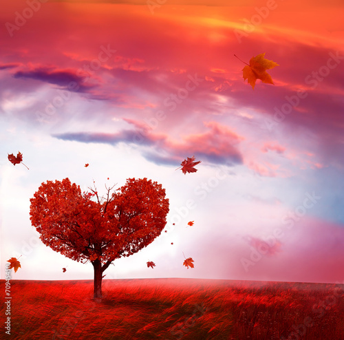 Poster Corail Autumn landscape with love tree