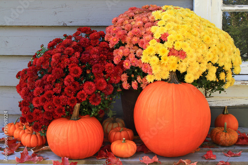 Fotografia  Autumn and Thanksgiving decoration