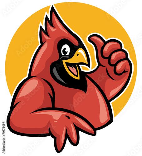 Fotomural thumb up cardinal
