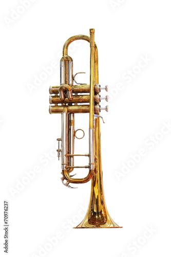 Slika na platnu trumpet