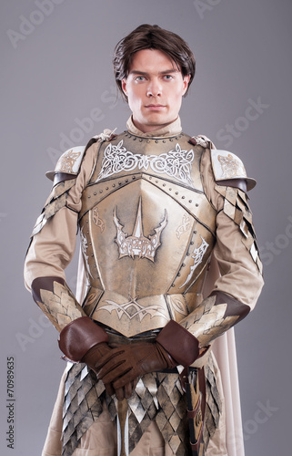 Photo  Medieval Knight