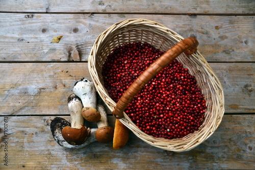 Photo Berries and mushrooms