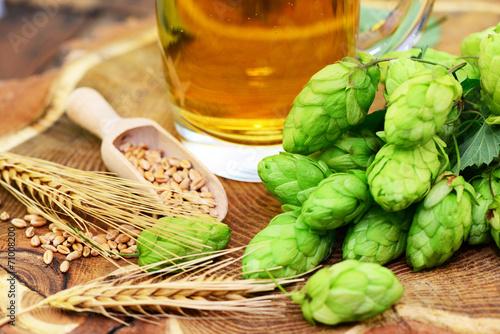 Hopfen, Gerste,Bier