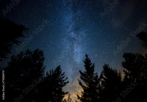 In de dag Nacht Milky Way over the Forest