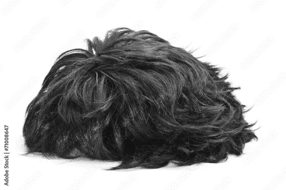 Fototapeta black hair wig
