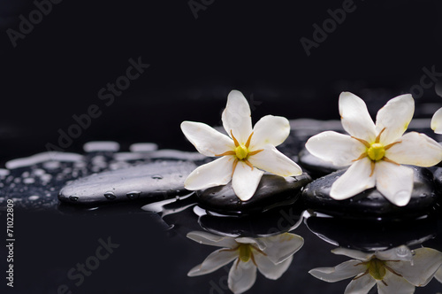 Tuinposter Spa Two gardenia flower on pebbles –reflection background