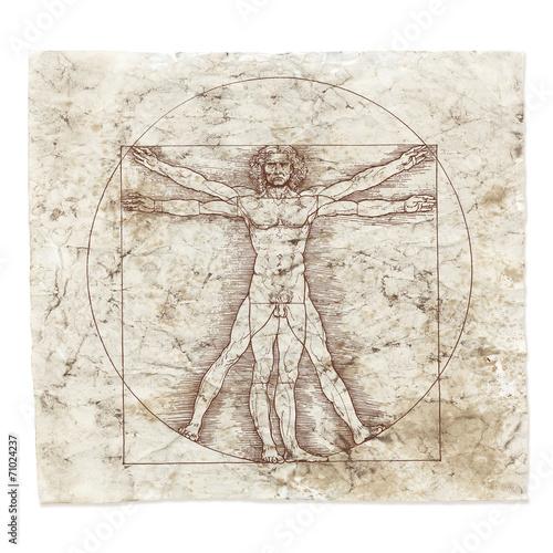 Fotografie, Obraz  Leonardo da Vinci