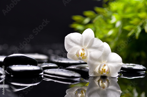 Recess Fitting Spa Spa and aromatherapy concept shot