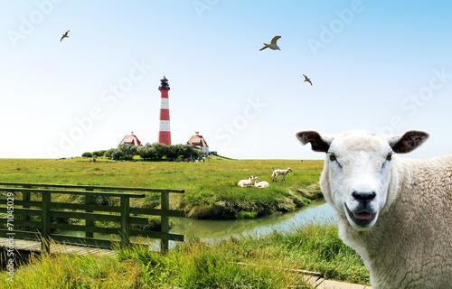 Spoed Foto op Canvas Noordzee nordfriesische Ansichten