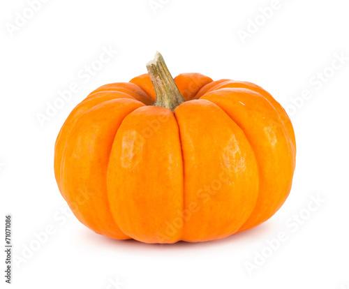Fotografie, Obraz  Mini Orange Pumpkin Isolated on White