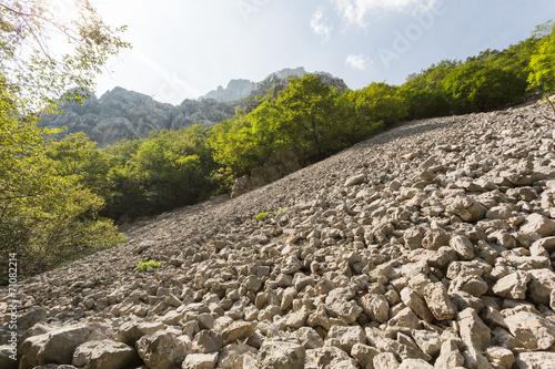 Fotografie, Obraz  Pierrier dans le canyon de Packlenica-Velebit