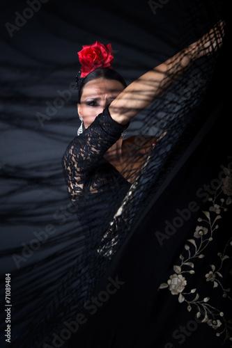Fotografie, Obraz Mladá tanečnice flamenca v krásné šaty na černém pozadí.