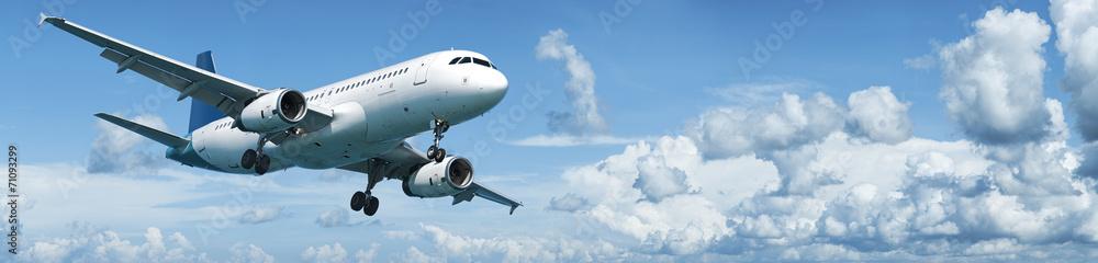 Fototapety, obrazy: Jet plane in flight