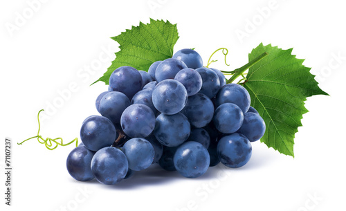 Canvas-taulu Blue grapes dry bunch isolated on white background