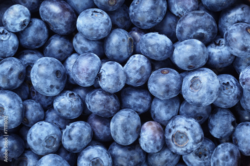 Vászonkép fresh ripe  blueberries berries