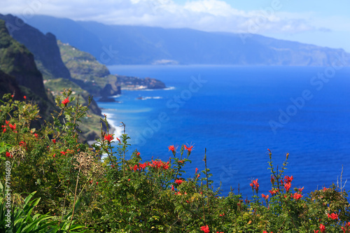 Fotografie, Obraz  View of beautiful  northern coast of Madeira, Portugal
