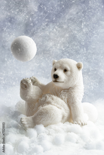 Poster Ijsbeer Polar Bear Decoration