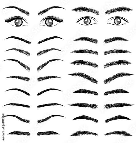 Photo Eyes  eyebrow   women and man vector