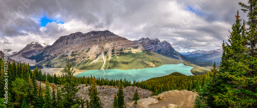 Spoed Foto op Canvas Canada Panoramic view of Peyto lake and Rocky mountains, Canada
