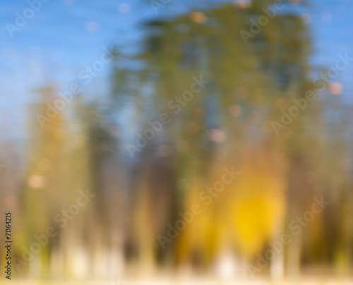 Cadres-photo bureau Melon Defocused autumn view with vibrant golden, orange colors and bok