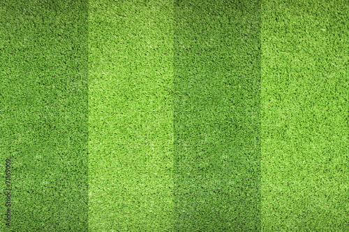 Deurstickers Gras Green Grass BG