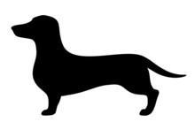 Dachshund Dog. Vector Black Silhouette.