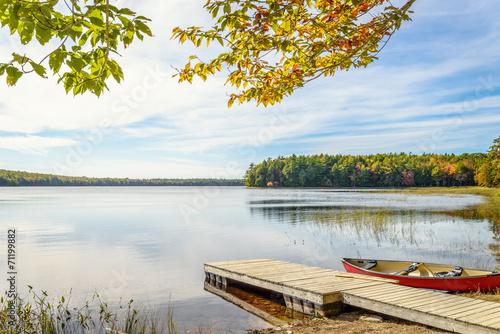 Poster Lac / Etang Kejimkujik lake in fall from Jeremy Bay Campground