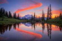 Tipsoo Lake Reflections
