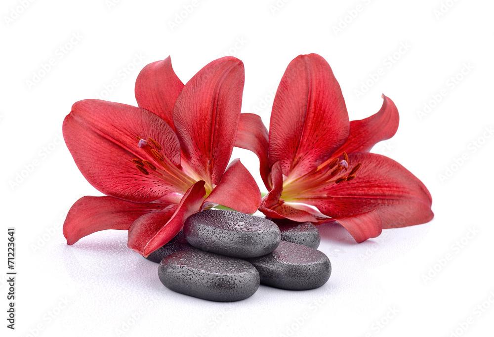 Fototapeta Kamienie bazaltowe z czerwonymi liliami - obraz na płótnie