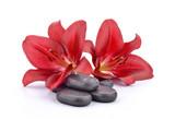 Fototapeta Kamienie - Kamienie bazaltowe z czerwonymi liliami