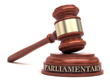 Parliamentary Law