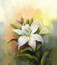 White Lily Flower.Flower Oil P...
