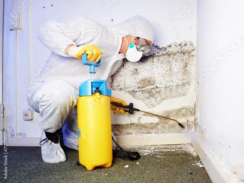 Pest controler eliminiates a mold infestation Fototapet