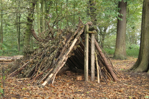Photo A Forest Shelter Made From All Natural Materials.