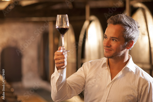 Fotografie, Obraz professional winemaker examining a glass of red wine in a tradit