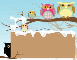 Obraz owl template