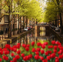Amsterdam With Green Canal In ...