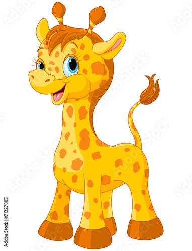 Photo  Cute giraffe