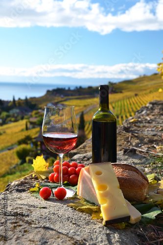 Foto op Canvas Alcohol Red wine, cheese, bread and cherry tomatoes. Lavaux, Switzerland