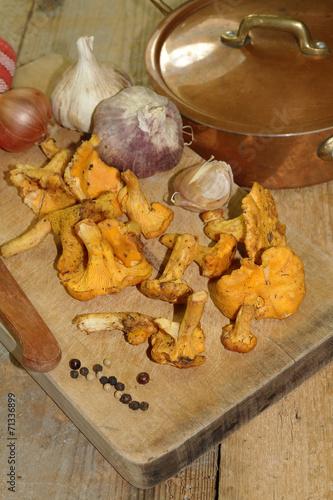 Keuken foto achterwand Assortiment girolles