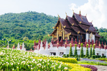 Ho Kham Luang In The Internati...