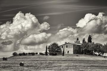 Obraz na Plexi Czarno-Biały tuscany
