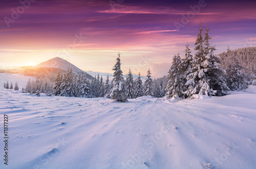Fotobehang Snoeien Colorful winter sunrise in the mountains