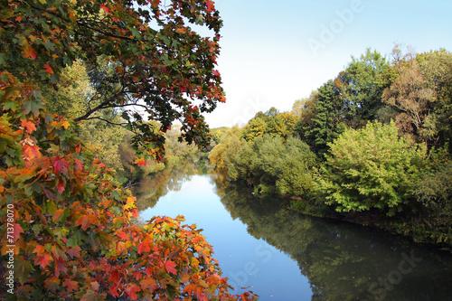 Foto op Canvas Bomen Autumn