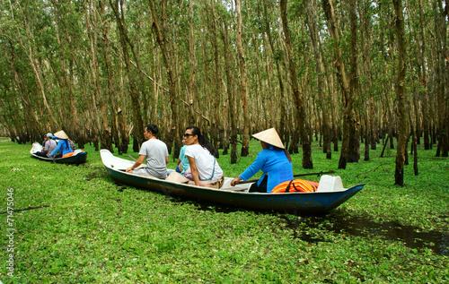 Tra Su indigo forest, Vietnam ecotourism Slika na platnu