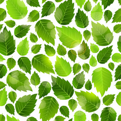 NaklejkaFresh green leaves seamless background pattern