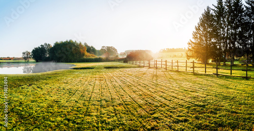Poster Honey Sunrise over misty grassland