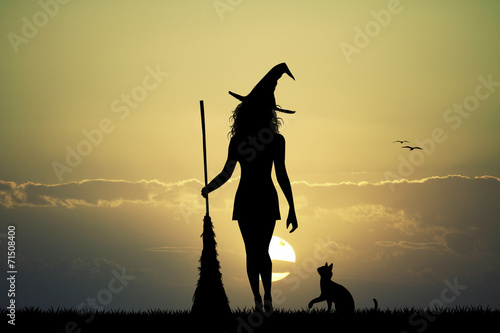 Fotografie, Obraz  witch silhouette at sunset