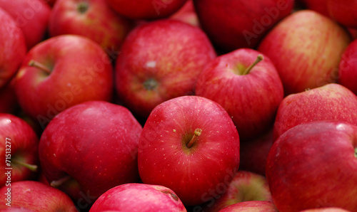 fototapeta na drzwi i meble Red Delicious Apple