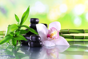 Fototapeta Do kuchni Spa stones, bamboo branches and white orchid
